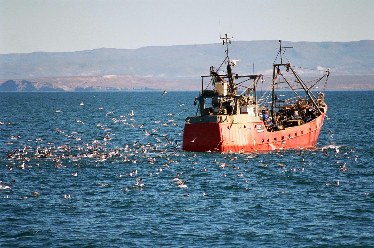 1 de octubre – Día del Mar y la Riqueza Pesquera