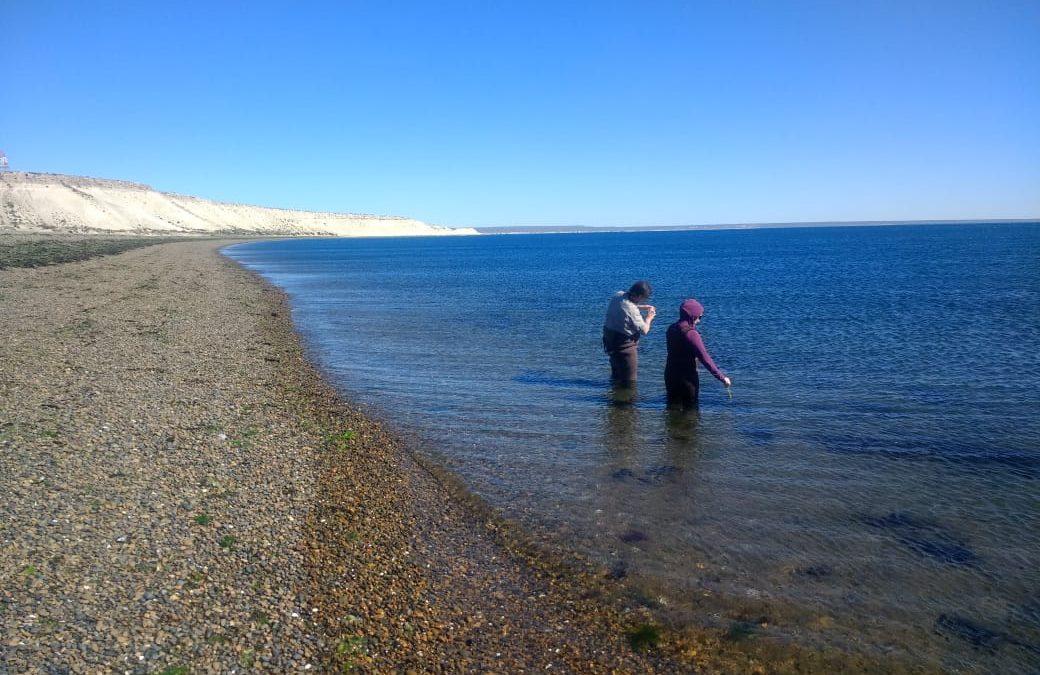 Ambiente intensifica muestreos de calidad del agua para uso recreativo en balnearios