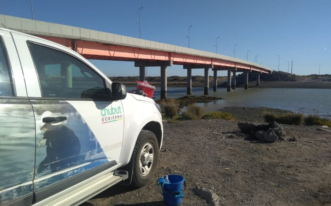 Ambiente continúa con el monitoreo de calidad de agua del Río Chubut